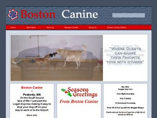 Boston Canine | Boarding