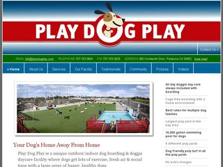Play Dog Play | Boarding