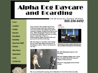 Alpha Dog Daycare and Boarding Portland