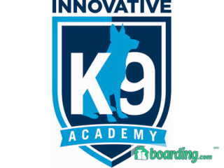 Innovative K9 Academy | Boarding