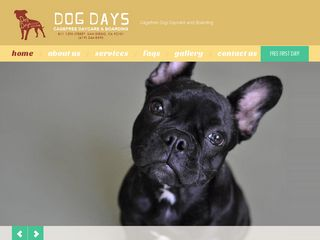 Dog Days Daycare   Boarding San Diego