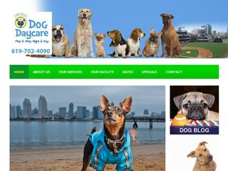 SD Dog Daycare San Diego