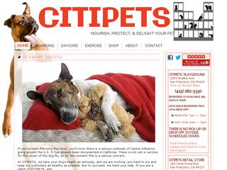 CITIPETS | Boarding