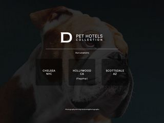 D Pet Hotels Scottsdale | Boarding
