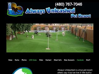 Always Unleashed Pet Resort | Boarding