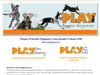 PLAY Doggie Daycare Seattle