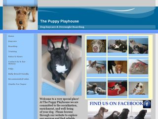 The Puppy Playhouse | Boarding