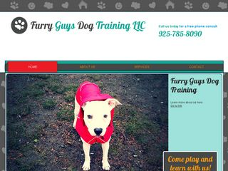 Furry Guys Dog Training | Boarding