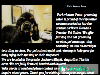 Photo of Park Avenue Paws in St Augustine
