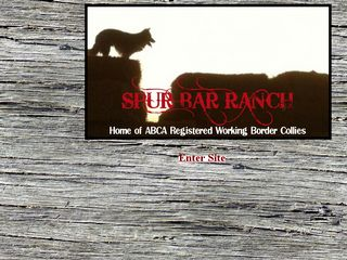 Spur Bar Ranch | Boarding