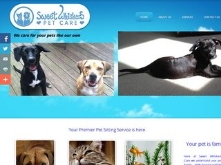 Sweet Whiskers | Boarding