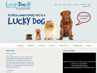 Lucky Dog Day Care Resort of South Tampa | Boarding