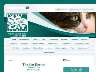 The Cat Doctor | Boarding