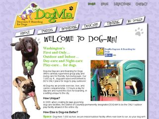 Dog Ma Daycare and Boarding for Dogs Washington