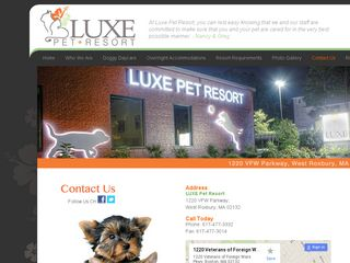 Luxe Pet Resort West Roxbury