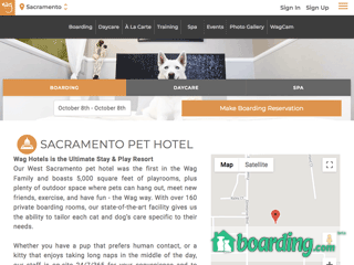 Wag Hotels   All Day Play Center   Dog Daycare Grooming | Boarding