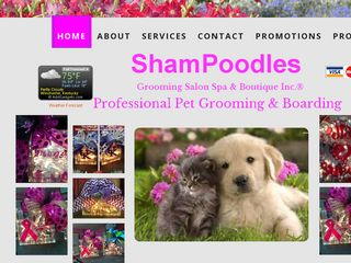 Shampoodles Pet Grooming and Boarding | Boarding