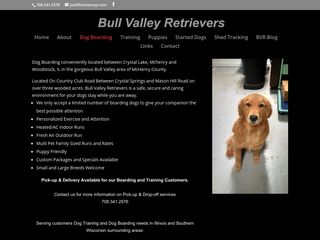 Bull Valley Retrievers Woodstock